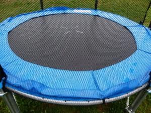 trampoline- immunity